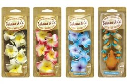Scented Necklace Air Freshener