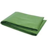 10' x 12' Heavy Duty Polyethylene Tarp with Reinforced Corners - Green